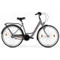 M-Bike Cityline 328 2021 Szary Mat