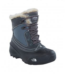 Buty The North Face Shellista Extreme 2T5VLC2 The North Face